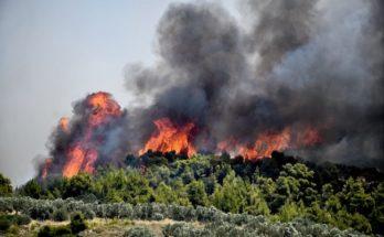 Γενική Γραμματεία Πολιτικής Προστασίας: Πολύ υψηλός κίνδυνος πυρκαγιάς (κατηγορία κινδύνου 4) για αύριο Κυριακή 11 Ιουλίου 2021