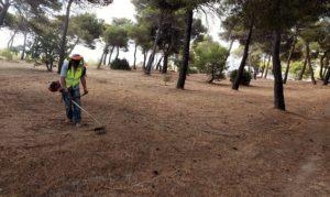 Οι καθαρισμοί συνεχίζονται με εντατικούς ρυθμους για δεύτερη εβδομάδα στην περιοχή της Νταού Πεντέλη