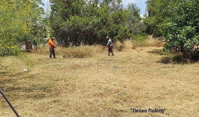 Χαλάνδρι: Μέτρα πυροπροστασίας – Καθαρισμός Οικοπέδων