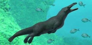 Αίγυπτος: Βρέθηκαν απολιθώματα τετράποδης φάλαινας που ζούσε περίπου πριν 43 εκατομμύρια χρόνια