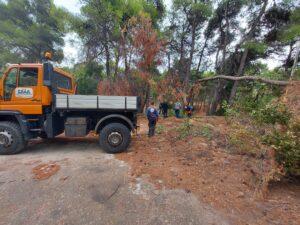 Ο ΣΠΑΠ και ομάδα εθελοντών και εργαζομένων συνέδραμε τον Δ. Πεντέλης στον καθαρισμό και την απομάκρυνση πεσμένων δένδρων και κλαδιών από τον χώρο του ΝΙΕΝ