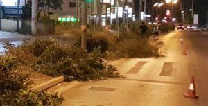 Βριλήσσια: Παρεμβάσεις σε κεντρικούς άξονες και οδούς από την Υπηρεσία Πρασίνου του Δήμου
