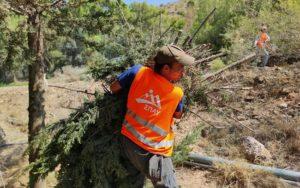ΣΠΑΥ : Νέα σημαντική παρέμβαση του ΣΠΑΥ στα σημεία επαφής του βουνού με τον αστικό ιστό στην περιοχή της Ηλιούπολης