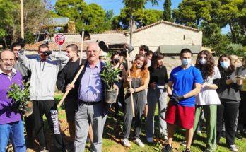 Παλλήνη: «Γιορτή για το περιβάλλον» Φύτεψαν 660 δεντράκια στον κοινόχρηστο χώρο παραπλεύρως του2ου Γυμνασίου – Λυκείου